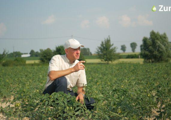 Dr inż. Jan Golba jest specjalistą w zakresie stosowania stosowania krzemu. Fot. Perma-Guard Agro